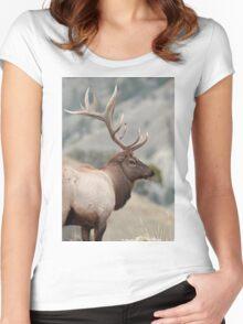 Bull Elk Women's Fitted Scoop T-Shirt