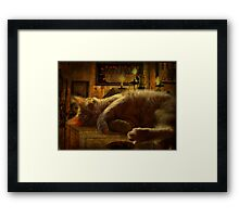 Sleeping cat on the mantle Framed Print