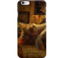 Sleeping cat on the mantle iPhone Case/Skin