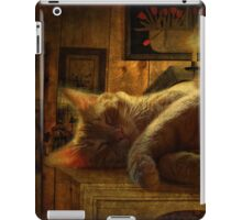 Sleeping cat on the mantle iPad Case/Skin