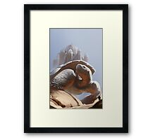 Turtle Temple Framed Print