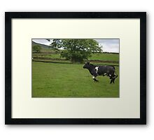 The Charging Cow Framed Print