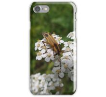 Pennsylvania Leatherwing Beetle iPhone Case/Skin