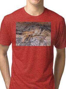 Crevice Lizard vs Grasshopper Tri-blend T-Shirt