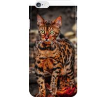 The Bengal Cat iPhone Case/Skin