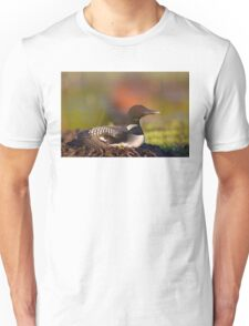 Common loon on nest T-Shirt