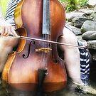 Water Cello  by ArtbyDigman