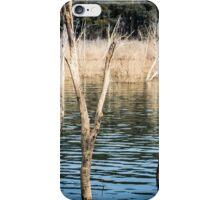 Lake Eildon Reflections iPhone Case/Skin