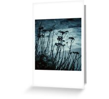 Midnight Dreams of the Sea Greeting Card