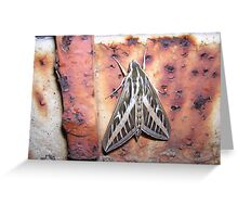 Hair of the Moth Greeting Card