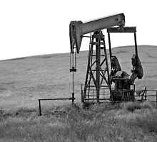 B&W - Pumping Oil  - Coalinga, California by Buckwhite