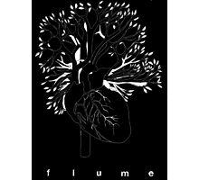 Flume  Photographic Print