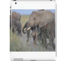 Elephant Sanctuary iPad Case/Skin