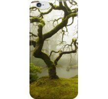 Japanese Maple Tree in a Winter Fog iPhone Case/Skin