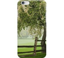 The rainy spring day iPhone Case/Skin