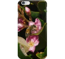 Indian hawthorn iPhone Case/Skin