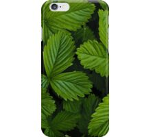 Green strawberry leaves iPhone Case/Skin