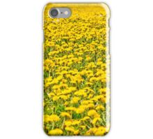 Beautiful countryside landscape in Transylvania, with green grass and dandelions iPhone Case/Skin