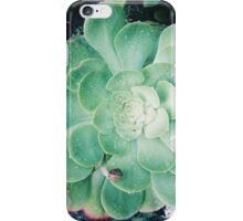 Succulents and snails iPhone Case/Skin
