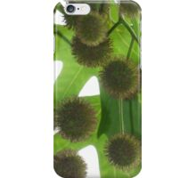 Itchy Balls on Tree iPhone Case/Skin
