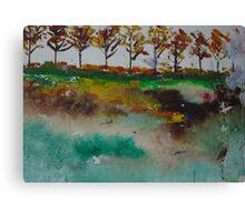 Natural Landscape  Canvas Print