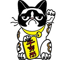 Grumpy Cat Maneki Neko  Photographic Print