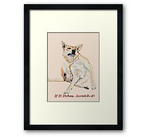 Cute funny dog scratching art with humorous slogan Framed Print