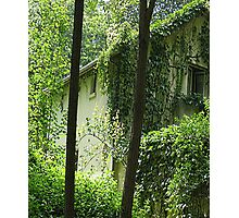 Paris Green House HFPHOT60 Photographic Print