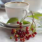 Still life with wild cherries by JuliaPaa