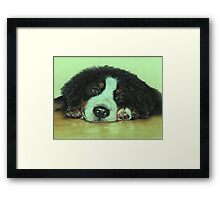 Big Puppy Paws Framed Print