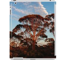 Red Trees, Goldfields WA Australia iPad Case/Skin