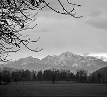 Autumn View of the Alps by Tiffany Dryburgh