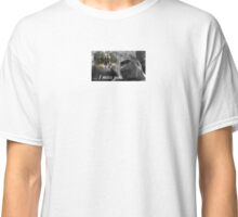GOOD NIGHT SWEET HARAMBE  Classic T-Shirt