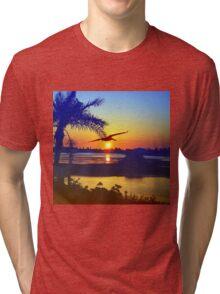 Flight to freedom Tri-blend T-Shirt