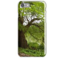 Two monumental swamp cypresses iPhone Case/Skin
