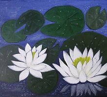 White Waterlily Flowers in Water Pond by naturematters