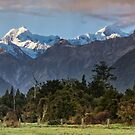 High Peaks of the Southern Alps by Images Abound | Neil Protheroe
