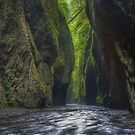 Oneonta Gorge by Images Abound | Neil Protheroe
