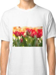 Garden of Tulips Classic T-Shirt