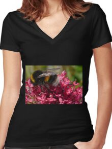 Mr Bumble at work...... Dorset UK Women's Fitted V-Neck T-Shirt