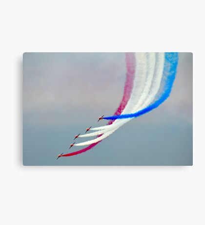 Flying At It's Best...... Canvas Print