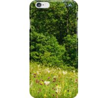 Beautiful countryside landscape with flowers, grass and haystack iPhone Case/Skin