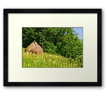 Beautiful countryside landscape with flowers, grass and haystack Framed Print