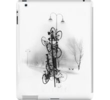 Bicycle Lamppost In Winter iPad Case/Skin