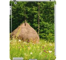 Beautiful countryside landscape with flowers, grass and haystack iPad Case/Skin