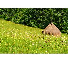 Beautiful countryside landscape with flowers, grass and haystack Photographic Print