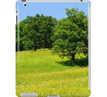 Beautiful countryside landscape with flowers iPad Case/Skin