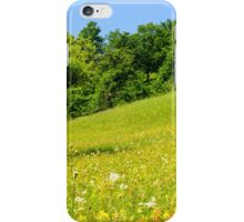 Beautiful countryside landscape in Transylvania iPhone Case/Skin