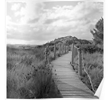 Wooden path crossing grass field in summer Poster