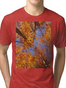 songs from the wood Tri-blend T-Shirt